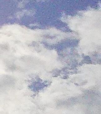 DSC_0008 (1).JPG
